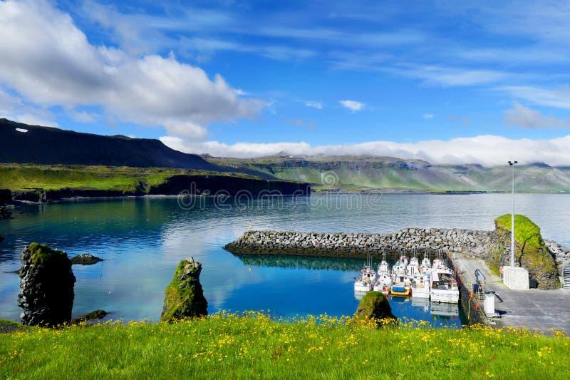 Vista stupefacente del paesino di pescatori di Arnarstapi immagini stock libere da diritti
