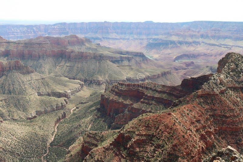 Vista stupenda del Grand Canyon di Cape Royal Trail fotografia stock