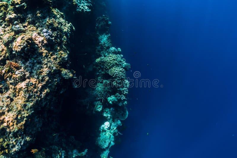 Vista subaquática com rochas e corais no oceano azul Ilha de Menjangan fotografia de stock royalty free