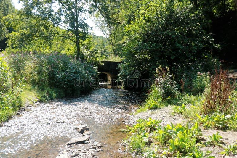 Vista sul fiume Semois, belga le Ardenne fotografie stock libere da diritti