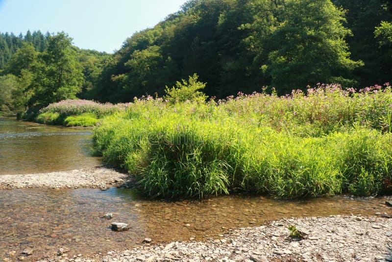 Vista sul fiume Semois, belga le Ardenne immagine stock libera da diritti