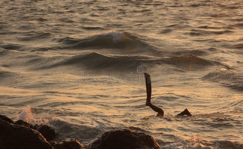 Vista sul mare al tramonto fotografia stock