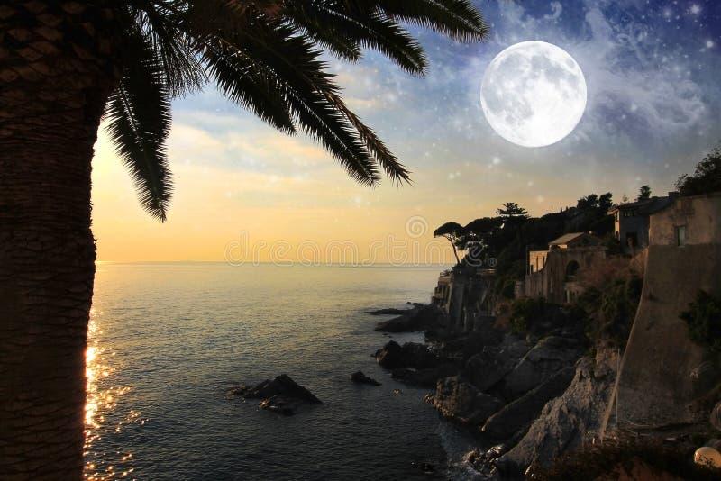 Vista sul mare con la palma, la luna e le stelle sul cielo immagine stock