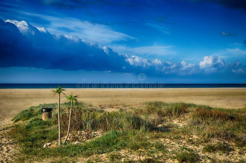 Vista sul mare con la spiaggia e le palme fotografia stock libera da diritti
