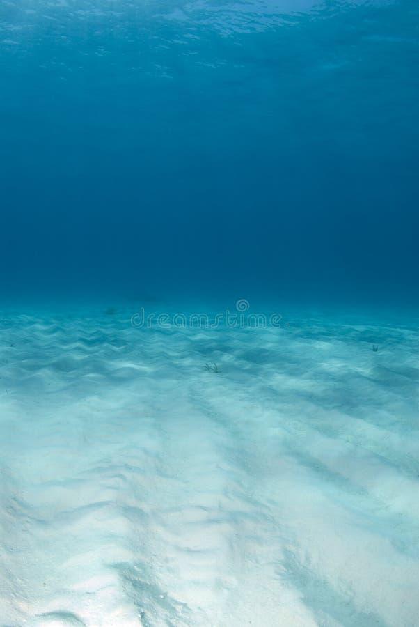 Vista sul mare del ritratto della spiaggia della tigre fotografia stock