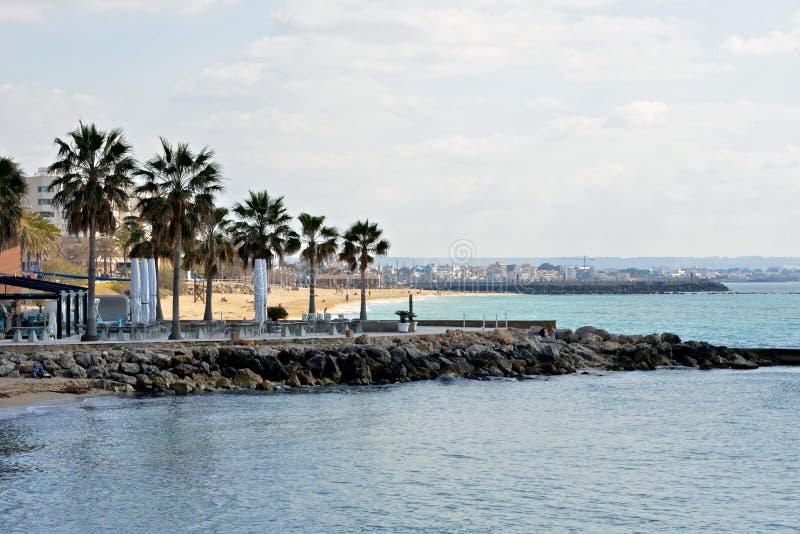 Vista sul mare di Palma de Mallorca con la spiaggia e le palme immagine stock libera da diritti
