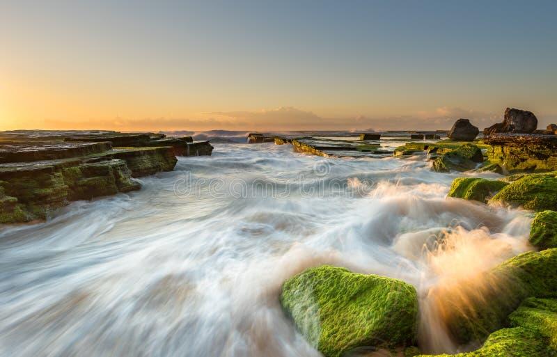 Vista sul mare a Turimatta nell'alba Sydney Australia immagine stock libera da diritti
