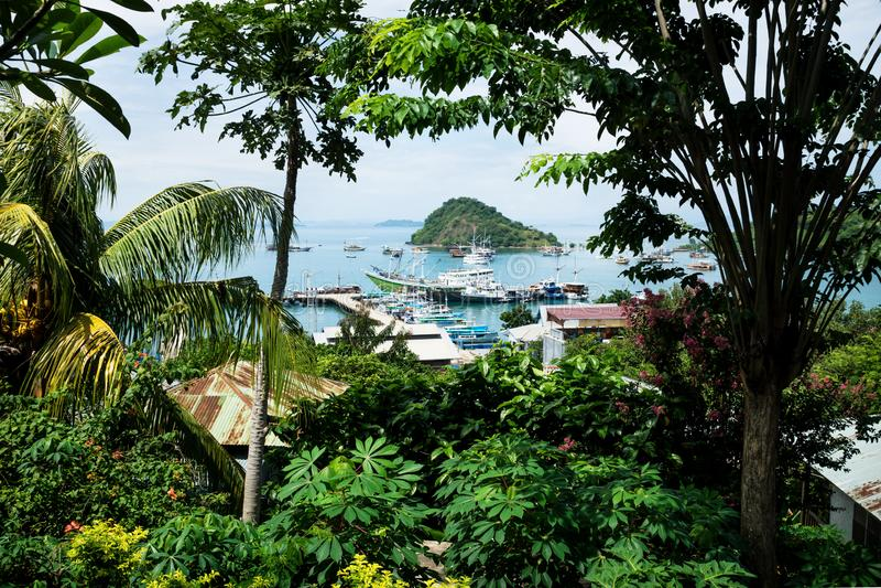 Vista sul porto di Labuan Bajo, Flores, Indonesia immagine stock