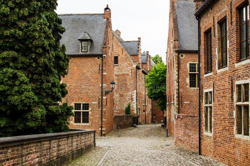 Vista sulla casa con mattoni a vista belga in Groot Begijnhof Lovanio immagini stock libere da diritti