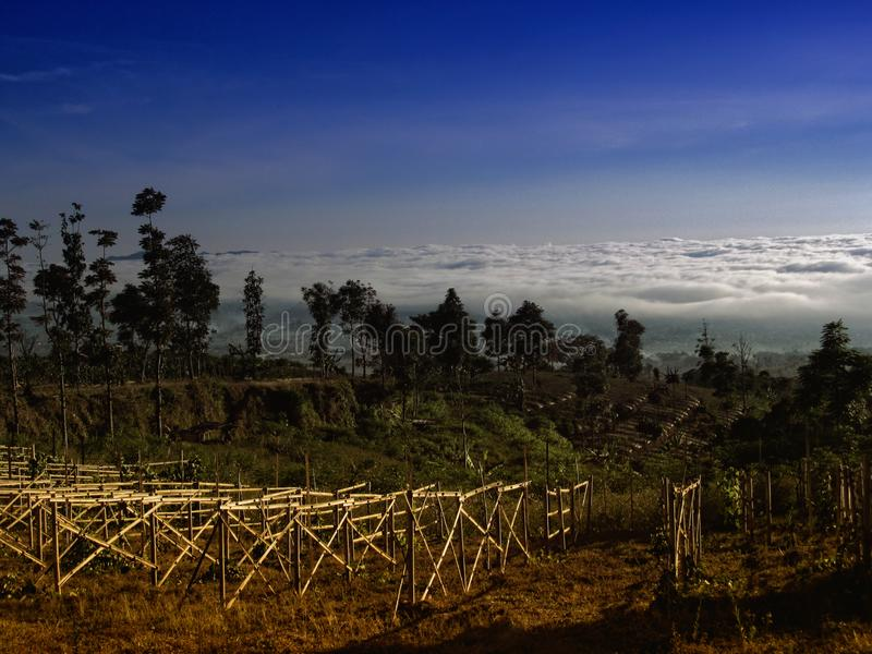 Vista sulla natura a Temanggung Java Indonesia centrale fotografie stock