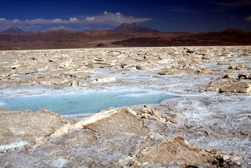 Vista sulla pozza luccicante blu dell'acqua salata in terreno secco sterile irregolare - piano di Salar Salt vicino a San Pedro d fotografia stock