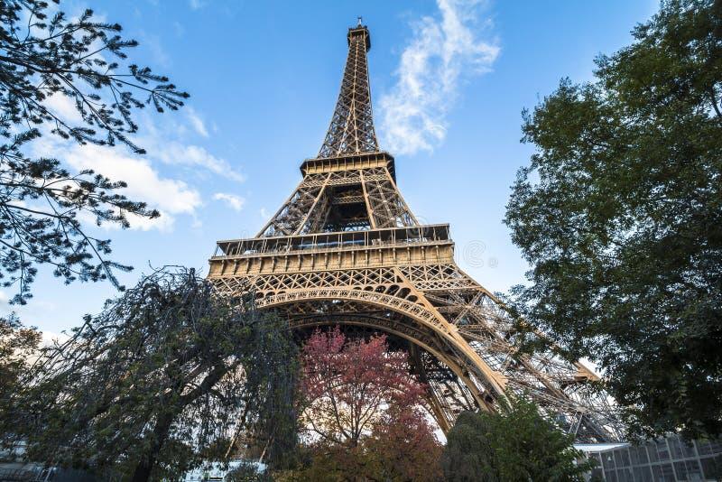 Vista sulla torre Eiffel da sotto nella sera, Parigi fotografie stock