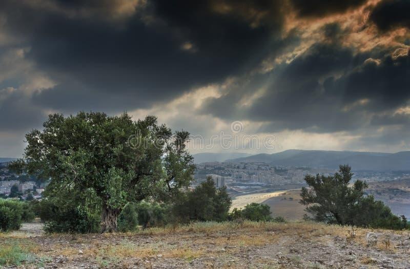 Vista sulle colline di Gerusalemme, Israele immagini stock