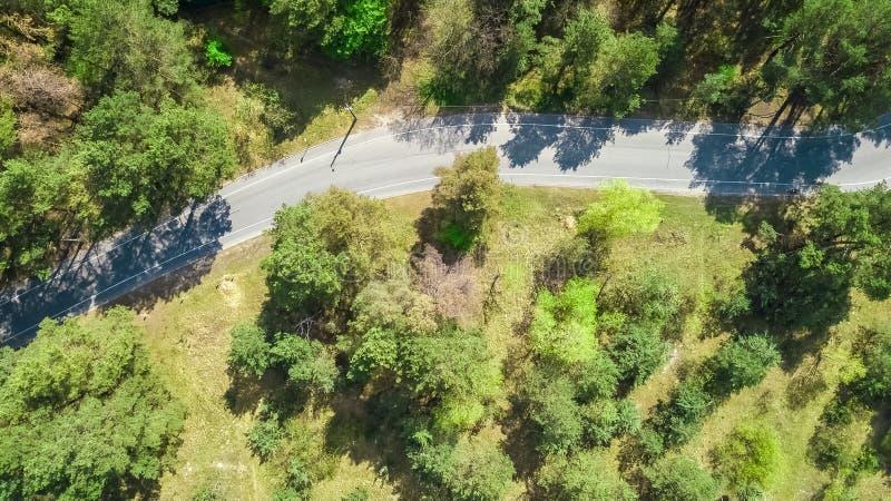 Vista superior aérea da estrada de floresta com pistas da bicicleta, ilha do parque de Truhaniv, Kiev, Ucrânia foto de stock