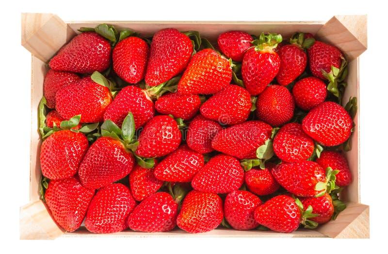 Vista superior da caixa das morangos isolada no fundo branco imagem de stock