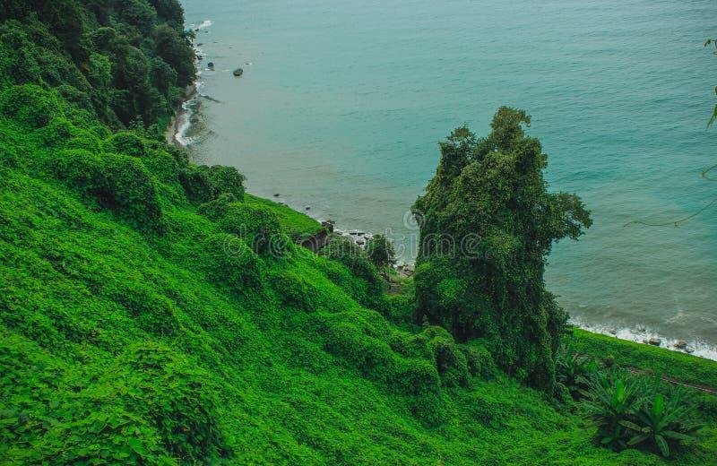 Vista superior da costa de mar com os caminhos de ferro da plataforma de observação do jardim botânico de Batumi, Geórgia fotografia de stock royalty free