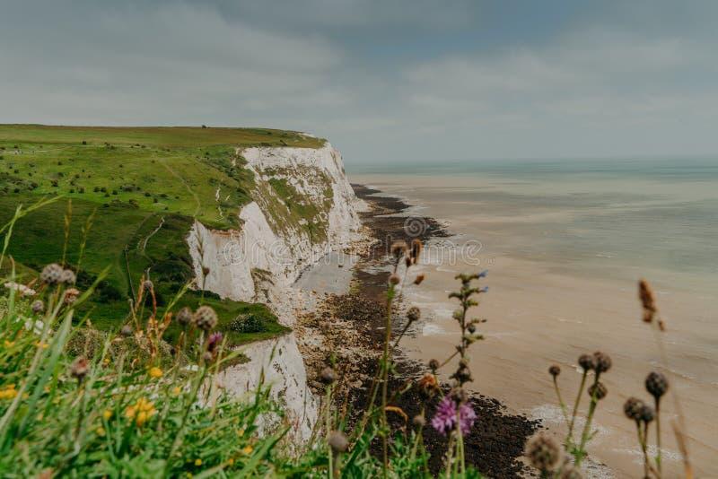Vista superior de los acantilados blancos de Dover Costa costa herbosa Cielo azul Acantilados de la piedra caliza Tiro a?reo ?rbo imagen de archivo