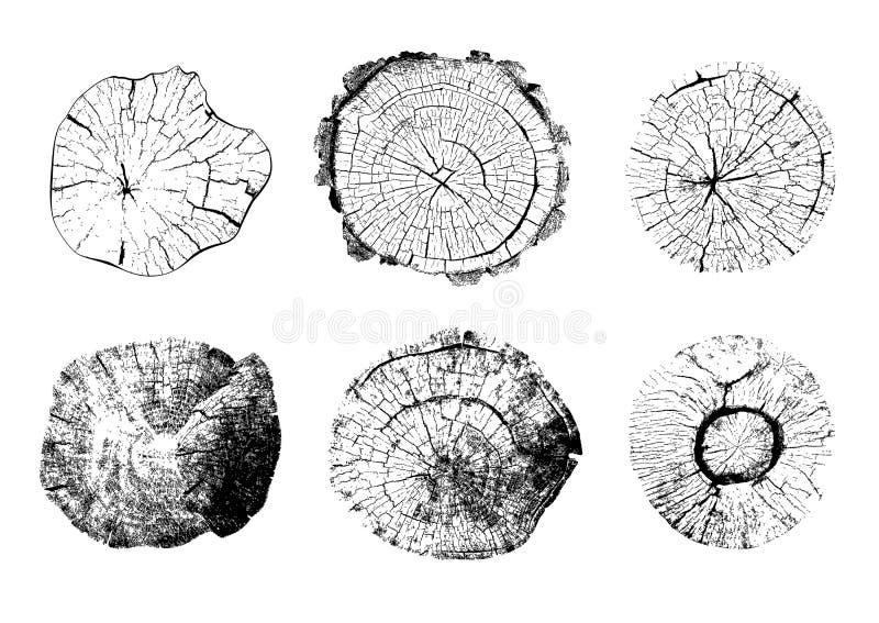 Vista superior de los ejemplos aislados de los tocones de árbol libre illustration