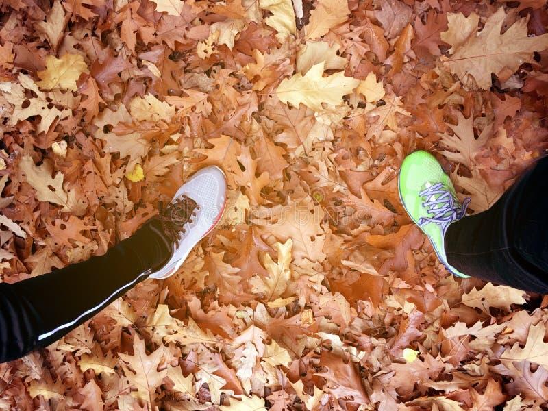 Vista superior de los pies de las personas del corredor dos que se colocan en las hojas caidas en el camino forestal del otoño imagen de archivo libre de regalías