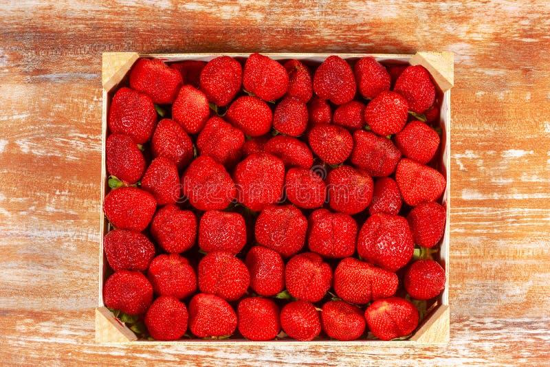 A vista superior de morangos espanholas saborosos recolheu recentemente em uma caixa de madeira foto de stock royalty free