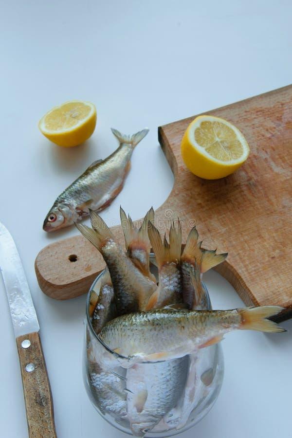 Vista superior de peixes crus da captura fresca, de cutboard e de limões crus no fundo branco, conceito saudável comer imagem de stock