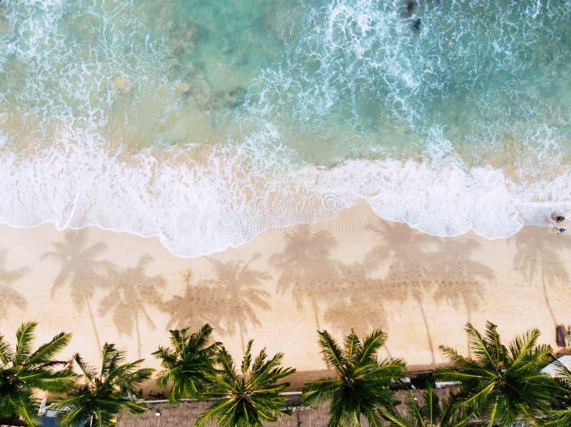 Vista superior de um banho de sol da mulher que encontra-se para baixo na possibilidade remota tropical da praia fotos de stock