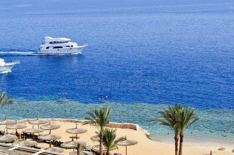 Vista superior de um Sandy Beach com sunbeds e guarda-sóis e de dois grandes navios brancos, um barco, um forro do cruzeiro que f fotografia de stock royalty free