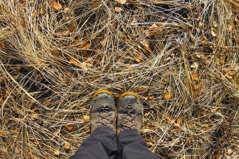 Vista superior de uma bota de caminhada na grama e na folha do outono fotos de stock royalty free