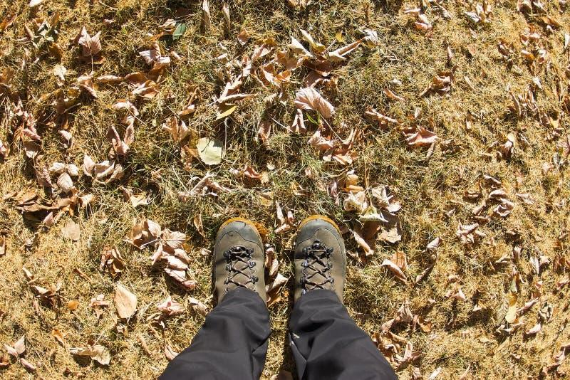 Vista superior de uma bota de caminhada na grama e na folha do outono fotografia de stock