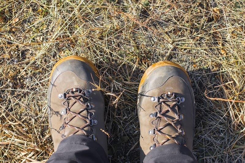 Vista superior de uma bota de caminhada na grama e na folha do outono fotos de stock