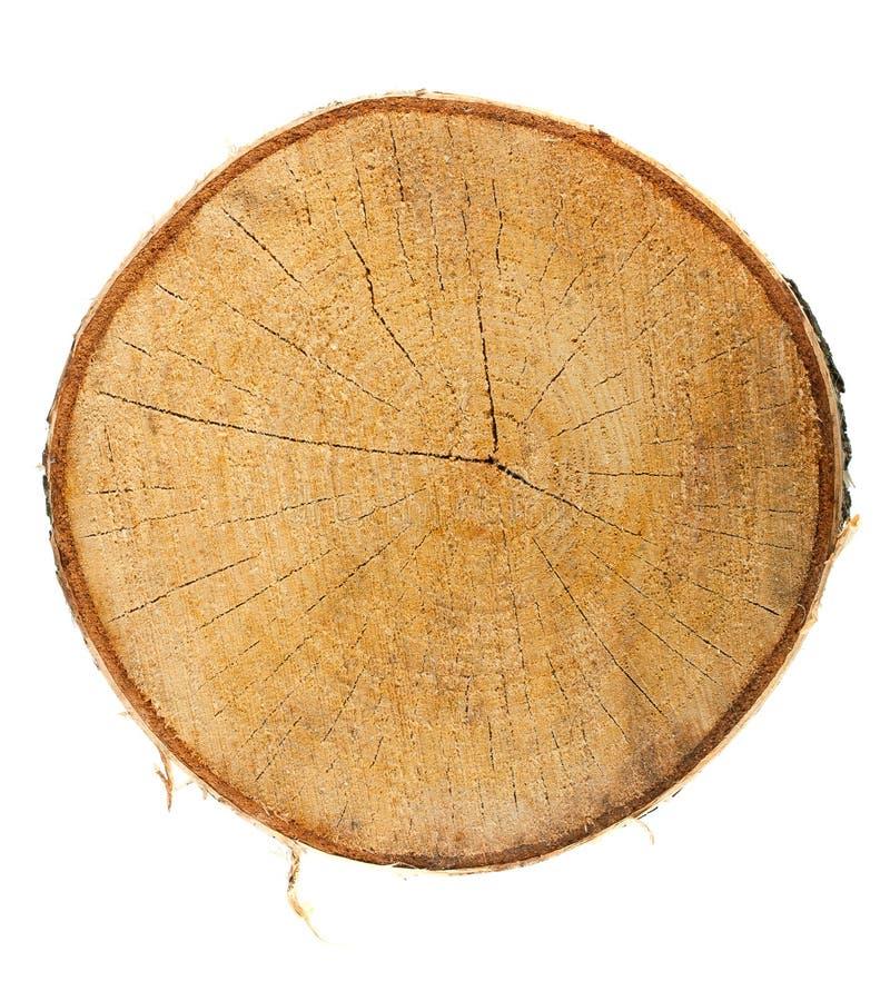 Vista superior de un tocón de árbol fotografía de archivo