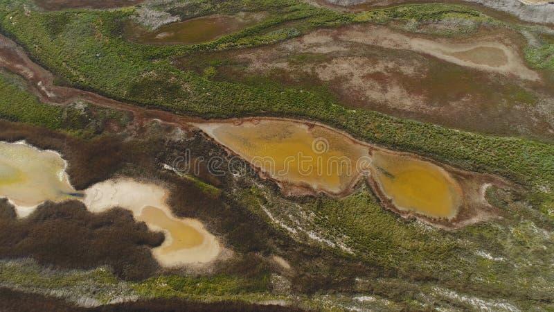 Vista superior del agua sucia modelada del pantano tiro El agua marr?n ?cida con los matorrales verdes parece el arte fl?ido del  foto de archivo