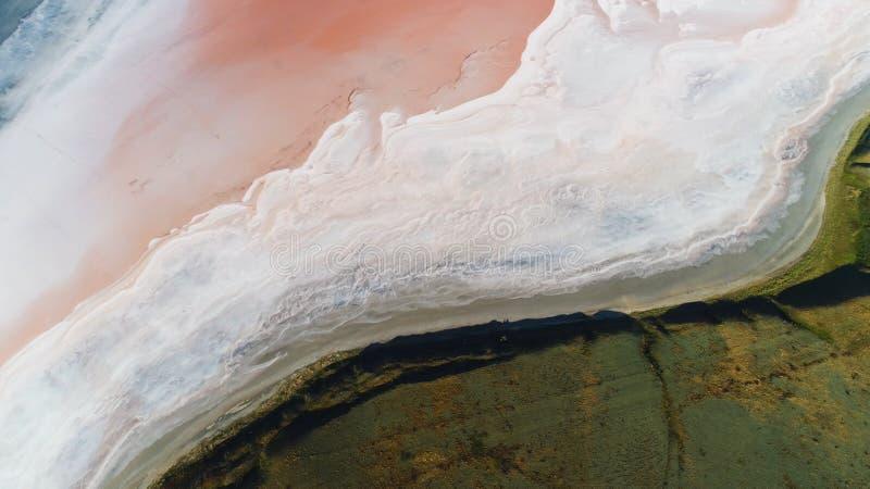 Vista superior del borde muerto cerca de la hierba verde, la belleza del mar de la sal de la naturaleza tiro Antena para el prado fotos de archivo
