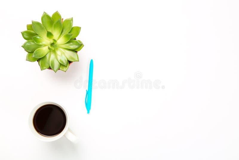 Vista superior del escritorio de oficina vacío Planta verde en un pote, la taza de café y la pluma azul en el fondo blanco copie  imagen de archivo