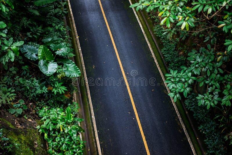 Vista superior del fondo de la textura del asfalto Camino vacío de la visión superior imagenes de archivo