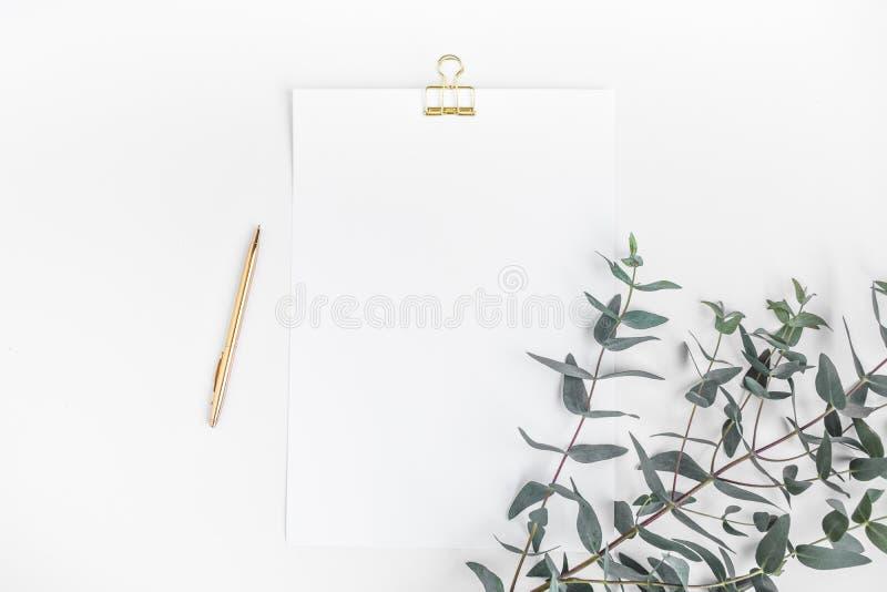 Vista superior del papel de carta blanco con la planta del eucalipto en la mesa de trabajo Estilo minimalista foto de archivo