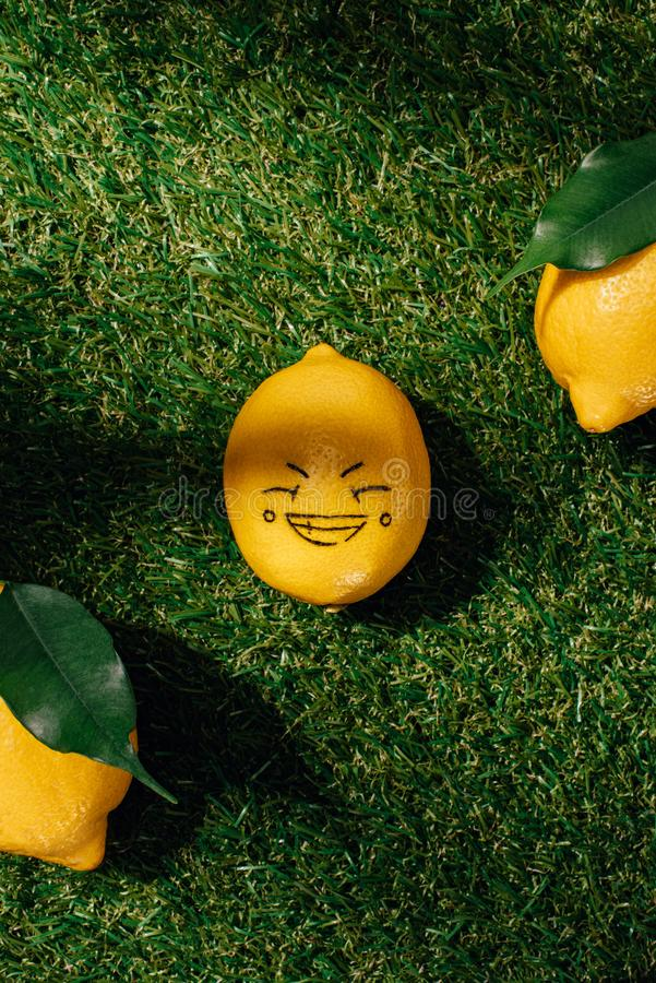 vista superior dos limões e do limão com tiragem da cara feliz imagens de stock