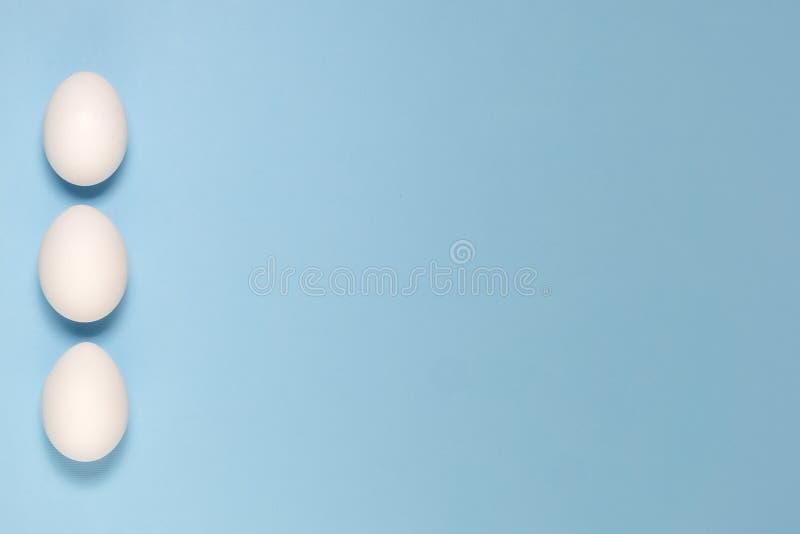 Vista superior dos ovos brancos isolados em pálido - fundo azul imagem de stock royalty free