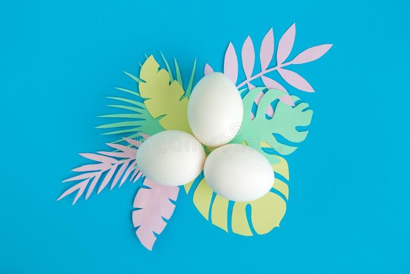 Vista superior dos ovos com as folhas tropicais coloridos feitas do sumário de papel foto de stock