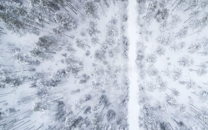 Vista superior na estrada invernal que passa através da floresta conífera coberto de neve fotografia de stock royalty free