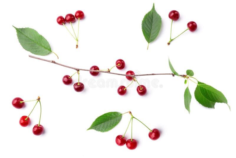 Vista superiore alla ciliegia sul bianco fotografie stock