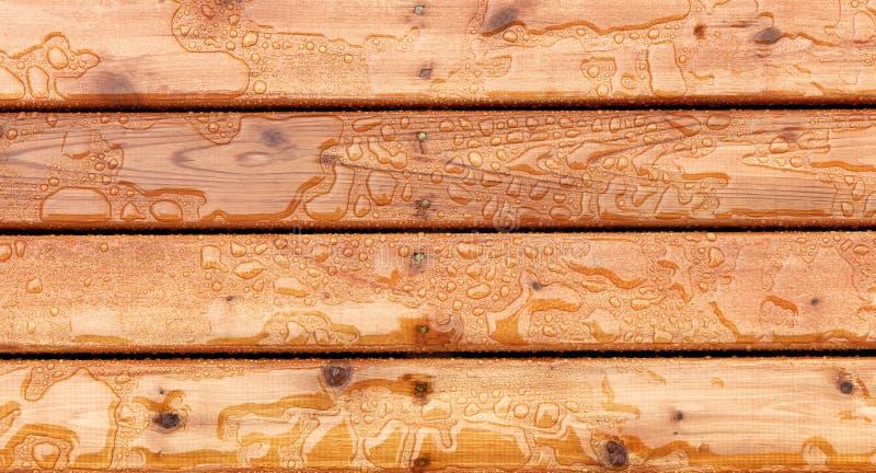 Vista superiore dei bordi di piattaforma di legno all'aperto della macchia con l'acqua piovana naturale sopra loro immagini stock