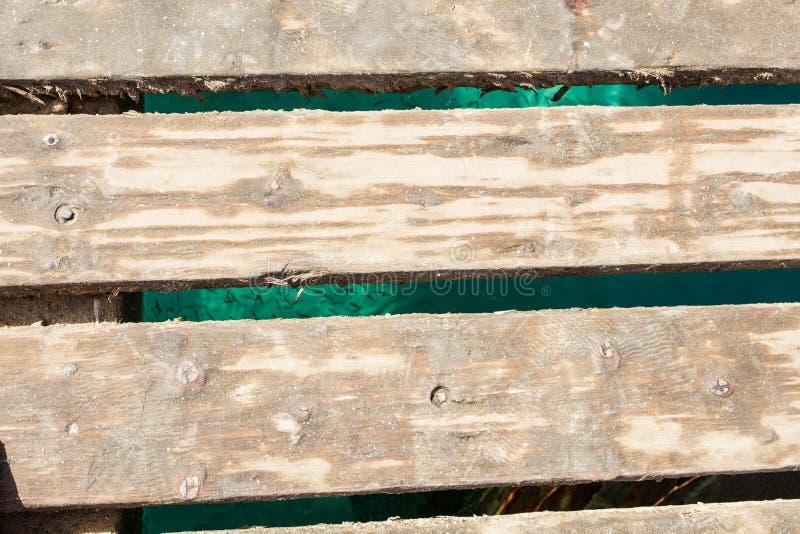Vista superiore del bacino di legno, pesci qui sotto immagini stock