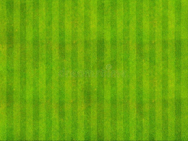 Vista superiore del campo di erba immagine stock