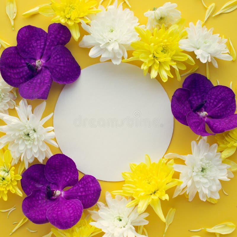 Vista superiore del fiore variopinto con spazio bianco sul tono giallo fotografia stock libera da diritti