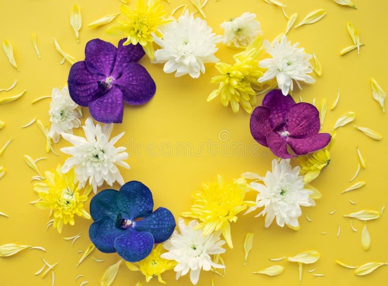 Vista superiore del fiore variopinto con spazio sul tono giallo immagine stock