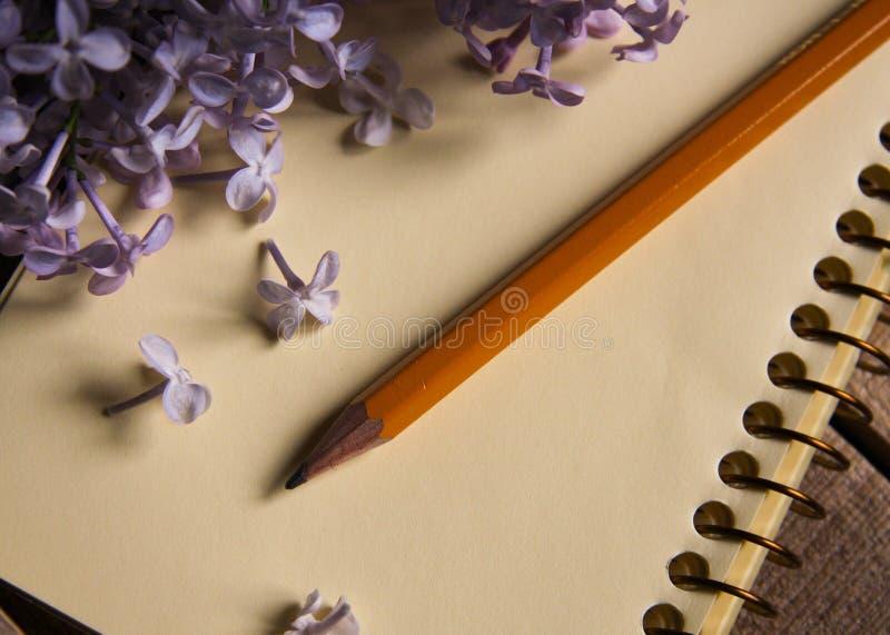 Vista superiore del lillà, della matita e del blocco note immagine stock
