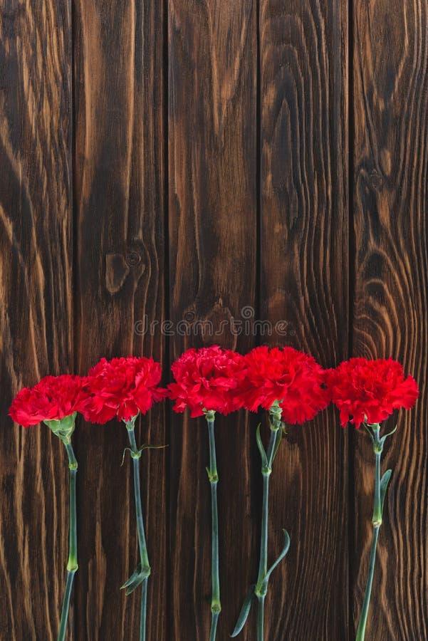 vista superiore del mucchio dei garofani disposti nella fila su fondo di legno fotografia stock libera da diritti