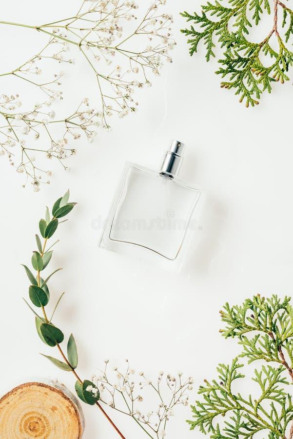 vista superiore della bottiglia di profumo con i rami verdi ed il taglio di legno fotografia stock