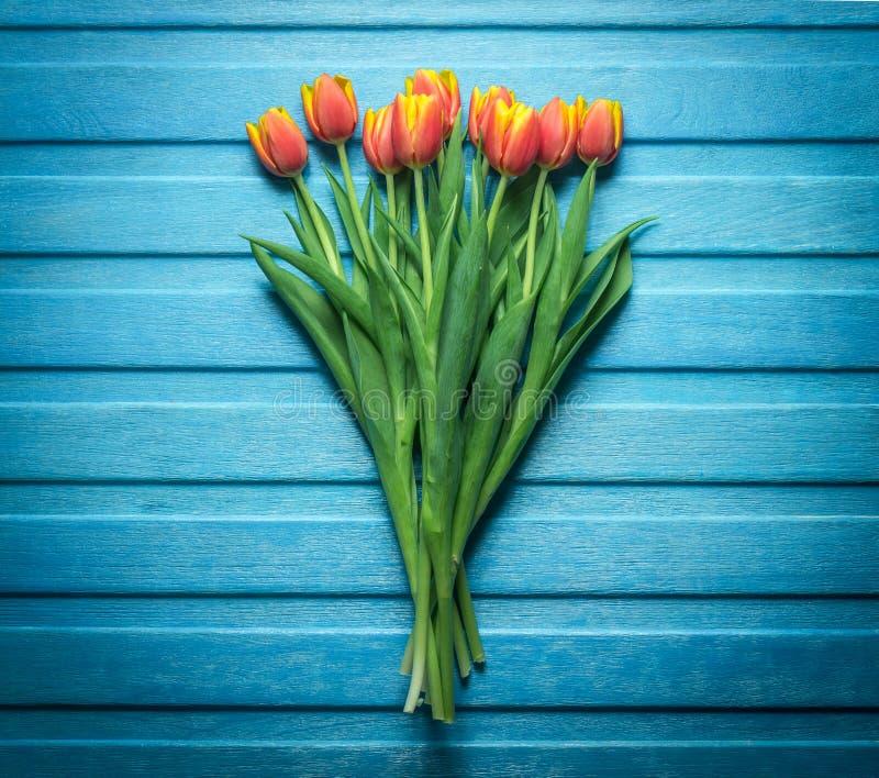 Vista superiore della disposizione dei tulipani fotografia stock libera da diritti